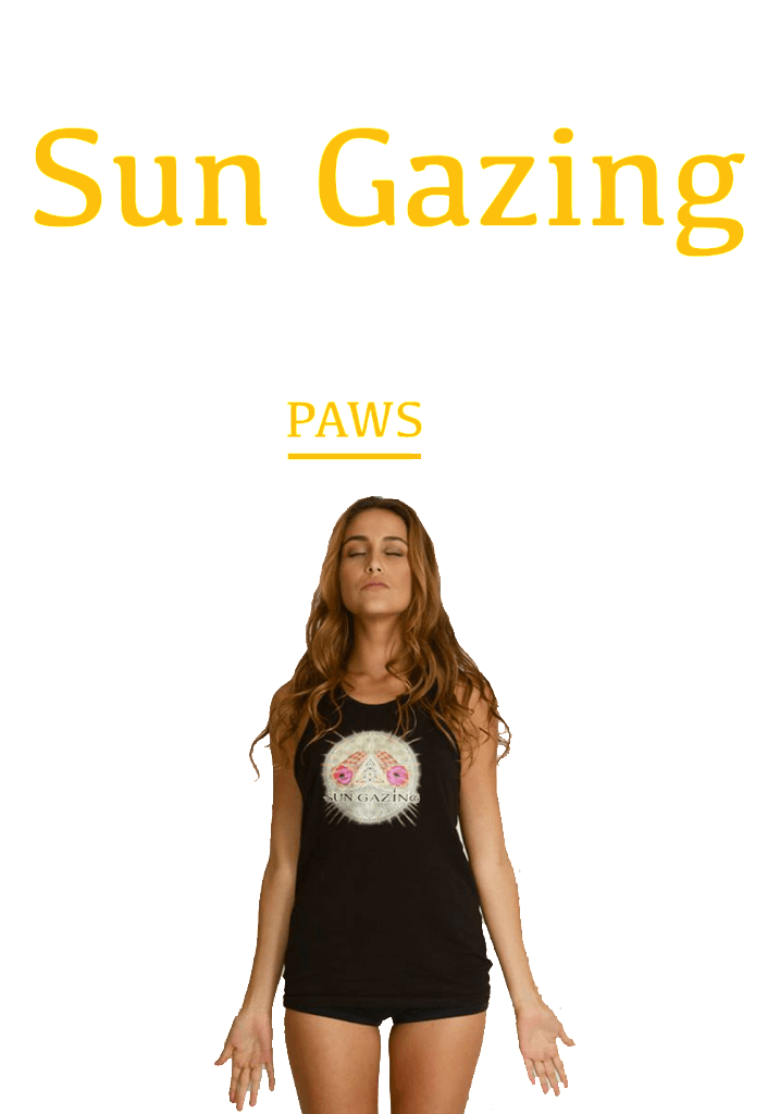 Shop the Sun Gazing Store