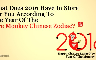 What Does 2016 Have In Store For You According To The Chinese Zodiac?