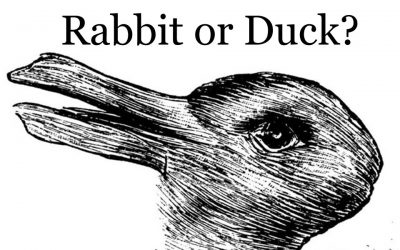 What Do You See First – Rabbit Or Duck? The Answer Will Assess How Creative You Are.