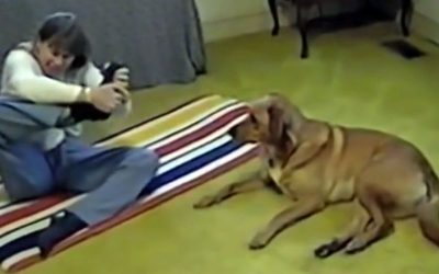 She Struggles While Trying Out A New Yoga Pose. Now Watch The Pup Show Her How It's Done.