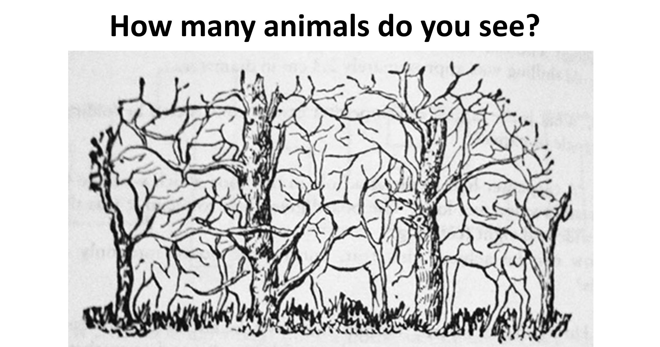 QUIZ The Number Of Hidden Objects You See Can Determine If Youre – Hidden Object Worksheets