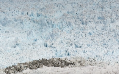 They Brought a Camera To A Secluded Area In Greenland and Captured This Extremely Rare Footage