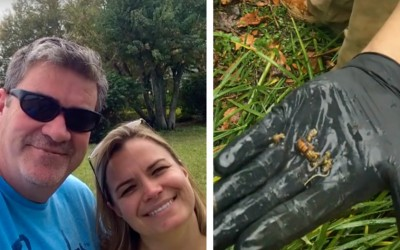 This Man Was Gardening In His Backyard, 60 Minutes Later He Died. The Reason? Scary!