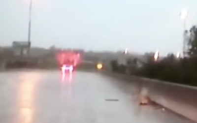 Cops Rescue a Helpless Deer on a Bridge During a Torrential Downpour!