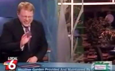 Local News Man Completely Loses It When He Tries To Pronounce THIS Pig's Name On Live TV.