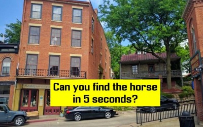 Only 3% Of People Can Find The Hidden Horse In Less Than 5 Seconds. Are You One Of Them?