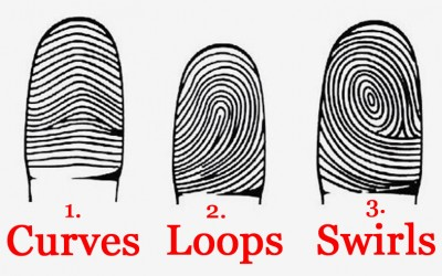 What Do Your Fingerprints Reveal About Your Personality? Find Out..