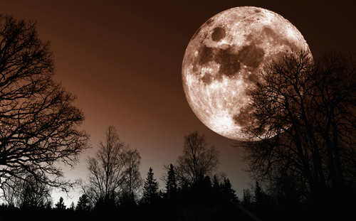 Rare Super Moon In Virgo: Prepare For a Huge Energy Shift On