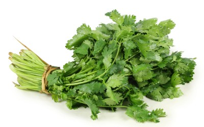 Doctors Reveal The Strange Reason Why Some People Hate The Taste Of Cilantro.
