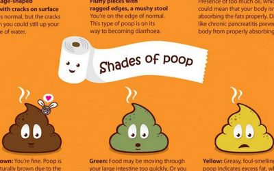 Apparently THIS Is What Your Poop Is Telling You About Your General Health!
