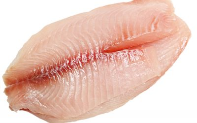 If You Still Eat Tilapia You Need To Stop Right NOW! The Reason Is Absolutely Disgusting!
