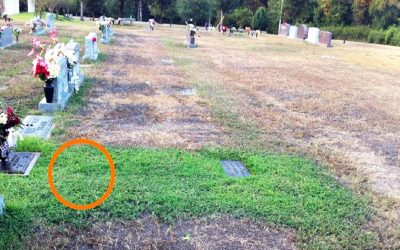 Mom Is Baffled and Confused Why Her Son's Grave Is Green. She Bursts Into Tears When She Discovers The Reason Why.