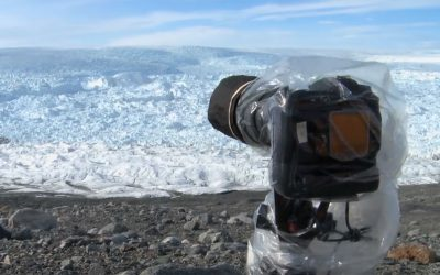 They Brought a Camera To A Secluded Area In Greenland. What They Recorded Is Simply Horrifying!