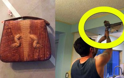 He Was Tearing Down and Redoing His Kitchen Ceiling. Then He Found THIS Strange Hidden Purse!