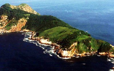 THIS Strange and Terrifying Island Is So Full Of Deadly Predators That Almost Every Human Who Arrives Doesn't Make It Out Alive!