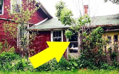 Photographer Discovers a Hidden Home In The Woods But Opens The Door and Sees The UNTHINKABLE!