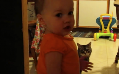 Watch This Kitty Have His Daily Morning Conversation With This Baby.